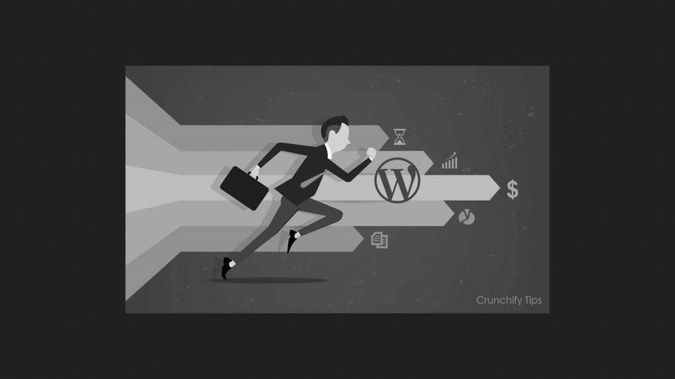 Wordpress schnelller machen